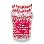 Mini Heart Valentine Straws: 30 Pack Bucket