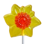 Daffodil Lollipops: 24 Pack