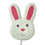 Sanded Bunny Face Lollipops: 24 Pack