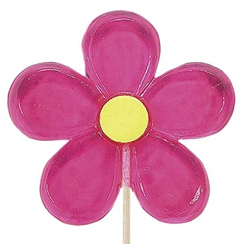 Giant Daisy Lollipops